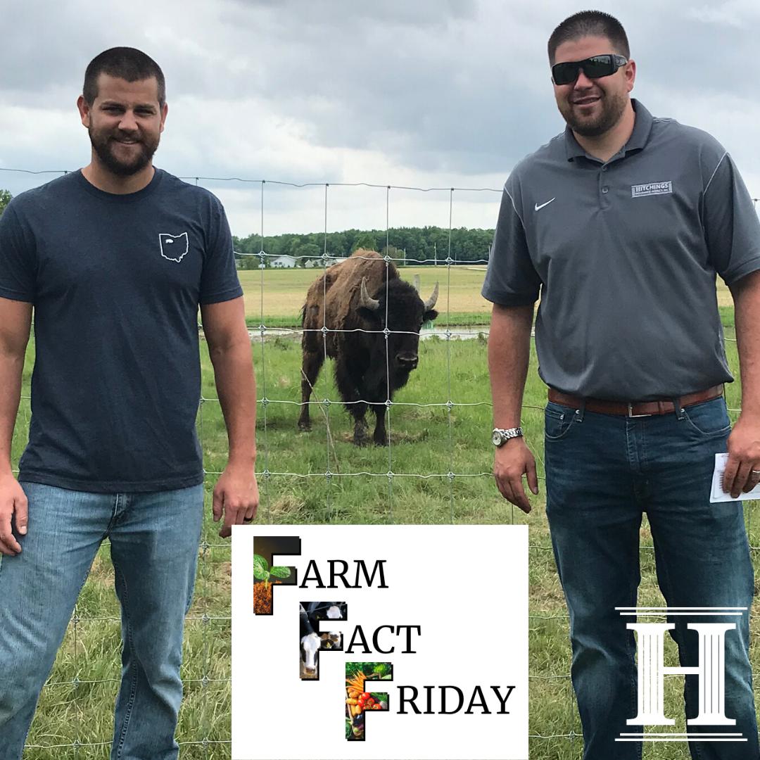 Farm Fact Friday Alvada Bison Ranch